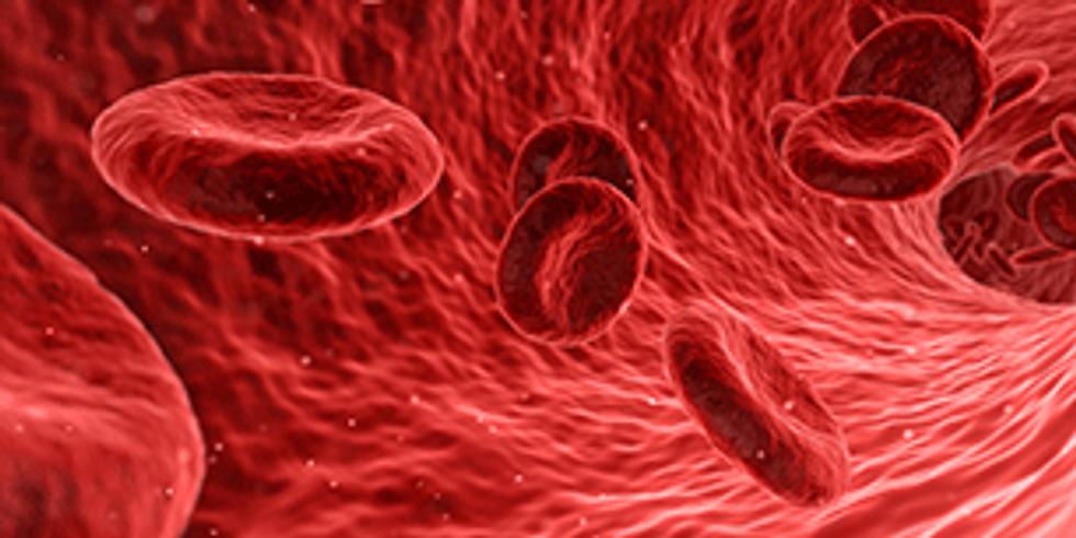 Curso Práxis nos Cuidados nas Úlceras Vasculogênicas