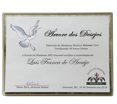 Lais-Franca-Biodanza-Arvore-dos-Desejos-