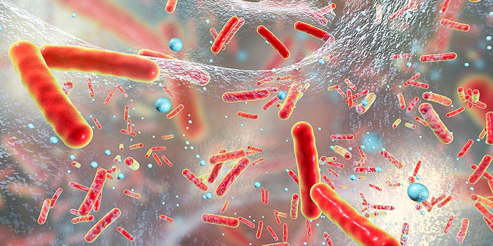 [2021-13] Antibióticos e Resistência Bacteriana à Droga
