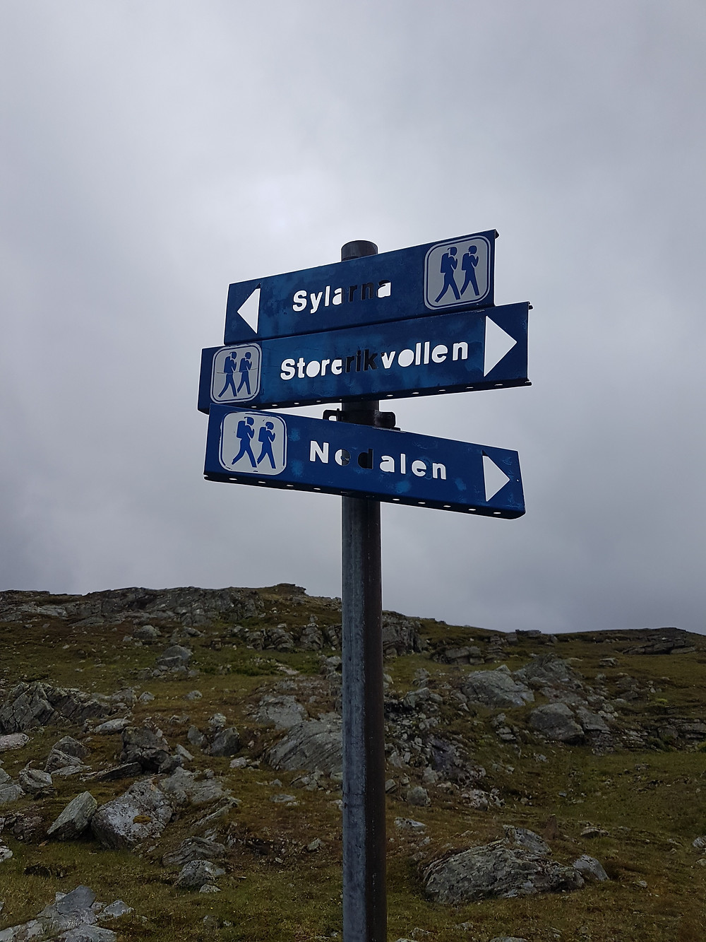 Hiking direction signpost