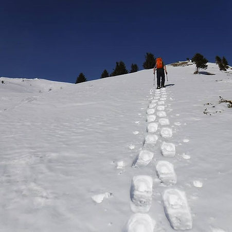 More lovely snowshoeing pictures from th