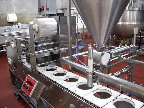 VE-1S Ice Cream.jpg