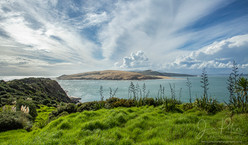 NZ Bay