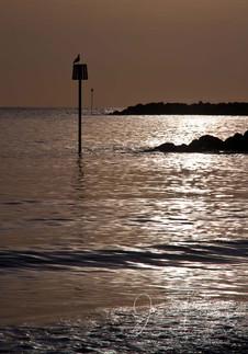 Lyme Regis Post