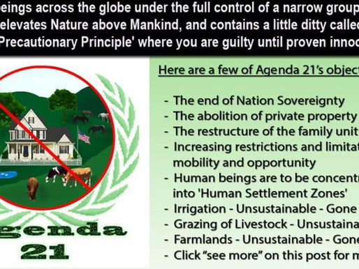 Agenda 21, The Great Reset- The Globalist Agenda that few even realize.