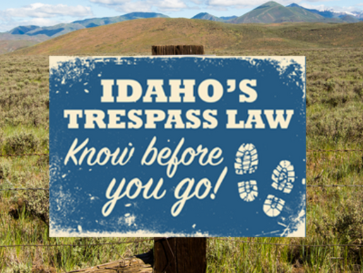 Trespass and the law pt.7
