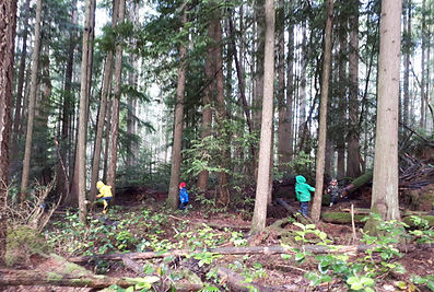 Log balancing at Nanaimo Forest Kids