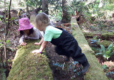 Investigating snails at Nanaimo Forest Kids