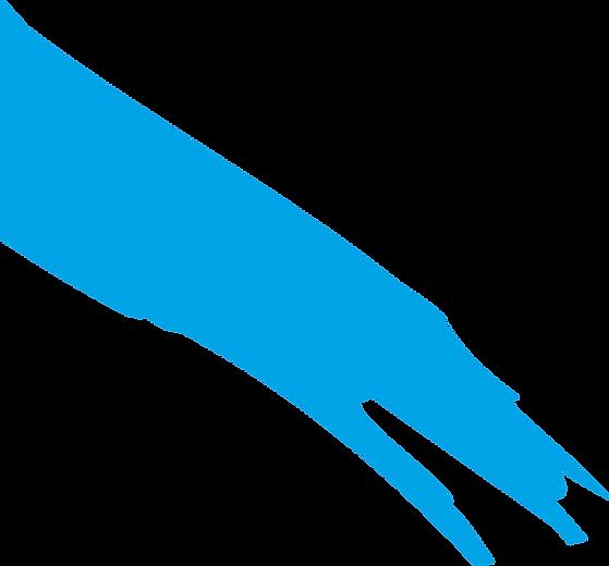 patten-Fill-Blue.png