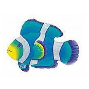 """30"""" Blue Foil Clown Fish"""