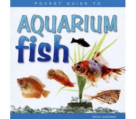 Pocket Guide to Aquarium Fish