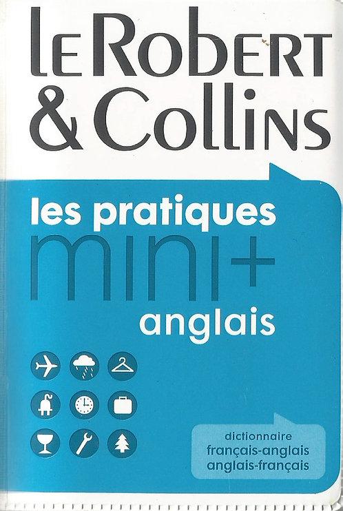 Les Pratiques Mini: Anglais