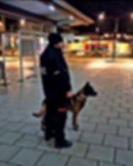 Sicherheitsmitarbeiter mit Hund_edited_e