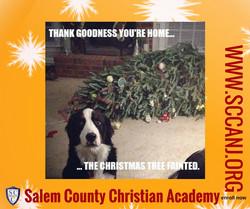 dog tree mishap