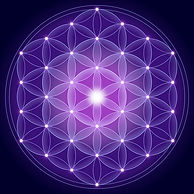 Flower of Life Canvas 700X700.jpg