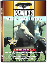 CLoud the Stallion DVD.jpg