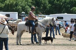 Mike Kerson and his mustang, Ruby, at Napa Mustang Days as an Ambassador