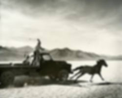 Mustangers pursuing a fleeing mustang