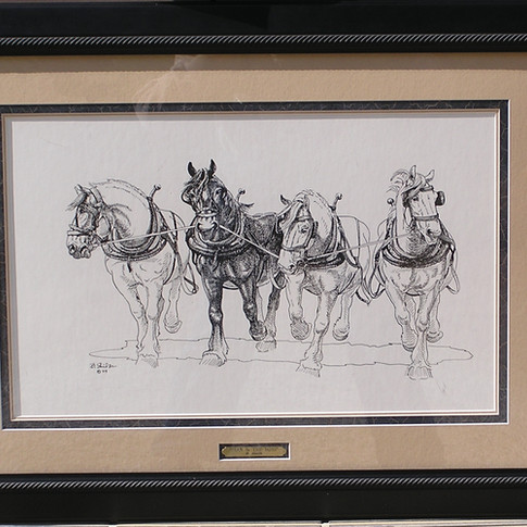 Star and the Boys $500