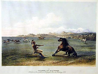 Painting of an Indian catching a wild horse, by George Catlin