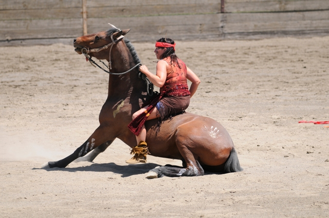 Performing Mustang