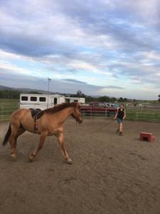 Rohan with Heather Edginton