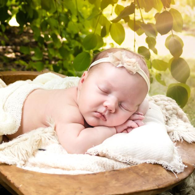 Elizabeth Wills | Newborn