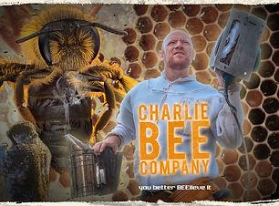 CharlieBee-850x625.jpg