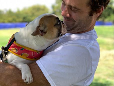 Dogs Deserve Love