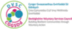 DVSC Strapline For Web.jpg