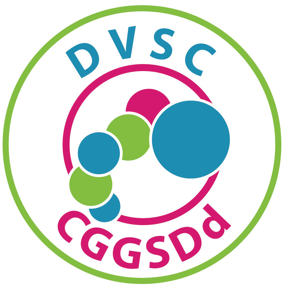 DVSC's New Year Greetings from Helen Wilkinson, Chief Executive, DVSC & #TeamDVSC