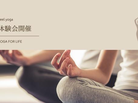 5月6日(木)よりFeel yoga 体験会を開催いたします!