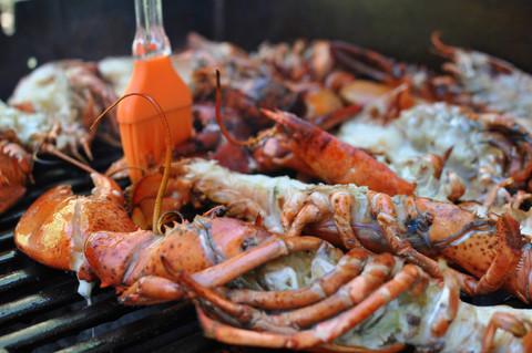 Half grilled lobsters.