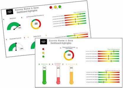 Survey Dashboard1.JPG
