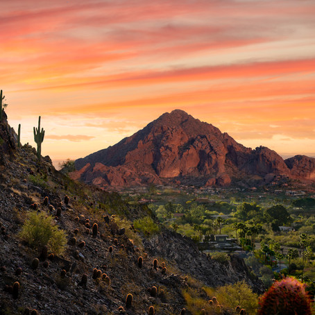A Love Letter to Arizona