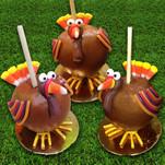 Color Turkey