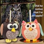 Caramel Owl 2.jpg