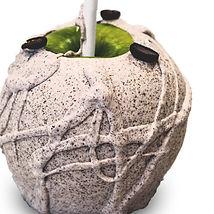 Manzana de cafe.jpg