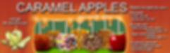 Banner manzanas.jpg