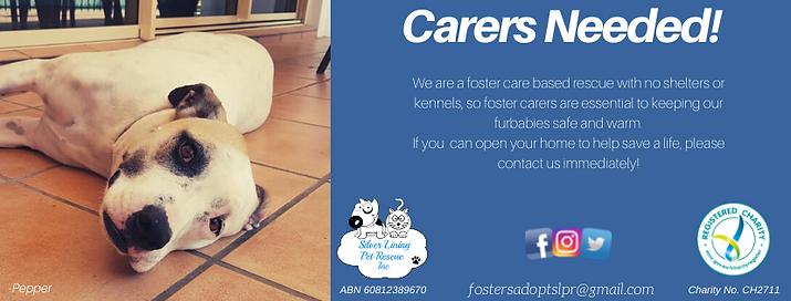Carers NeededPepper.png