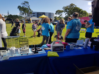 Another Successful BAAC Animal May Day Appeal Festival and Ride!