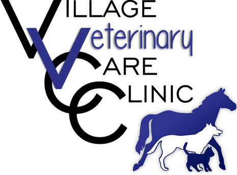 Village-Veterinary-Care-Clinic.png