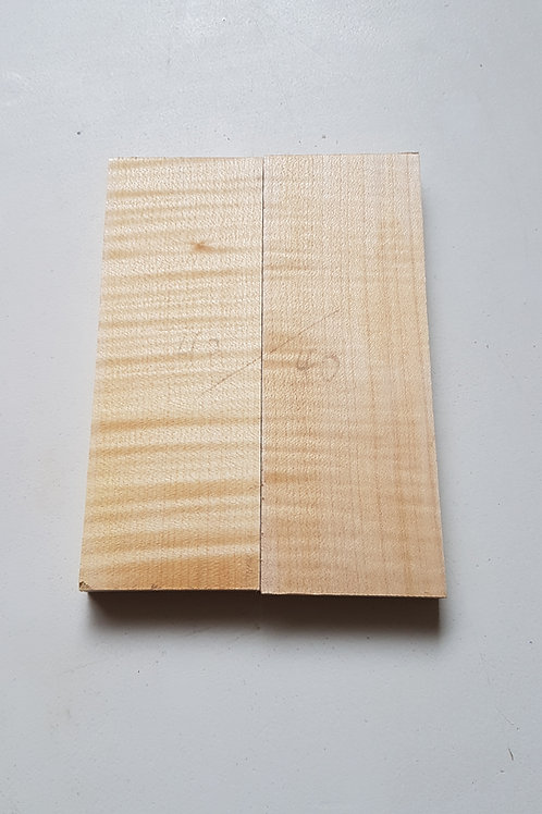 Rippled Sycamore scales ref 40