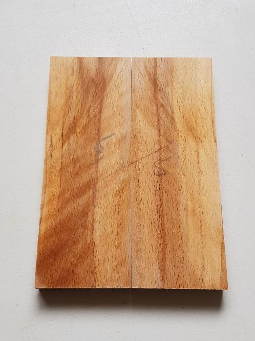 Ash scales ref 5