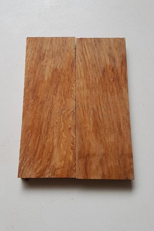 Brown Oak scales ref 22