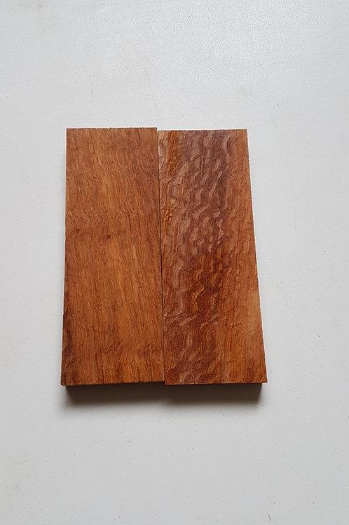 Brown Oak scales ref 76