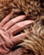 tan-gloves-4562830_960_720.jpg