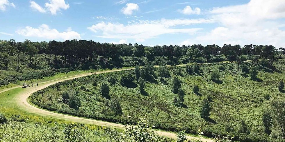 Milford to Haslemere (The Devil's Punchbowl)