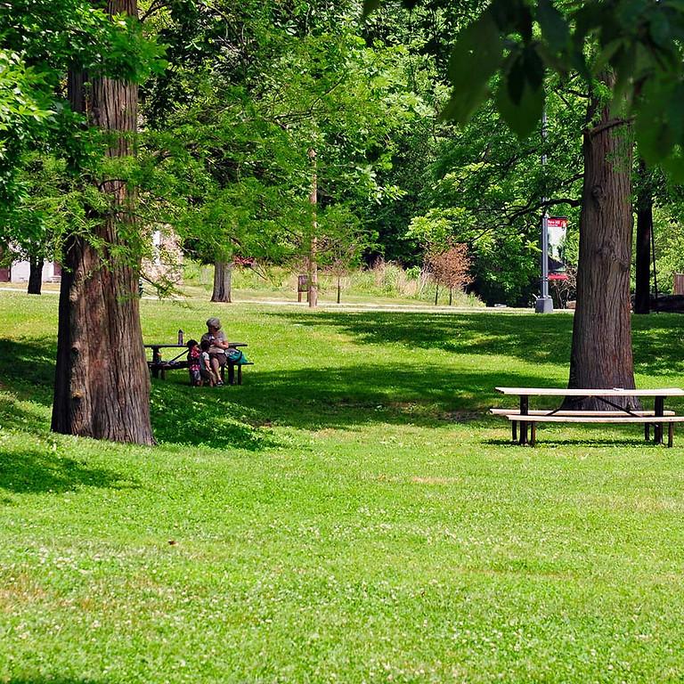 Social: Picnic in Regent's Park