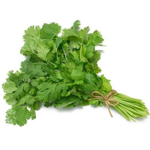 Fresh Herbs Coriander